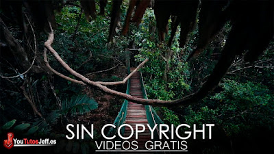 descargar videos sin copyright