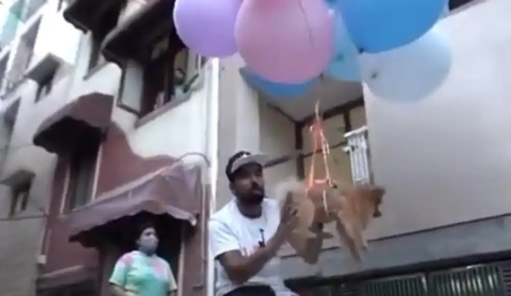 Indian YouTuber arrested for trying to make dog fly with helium balloons