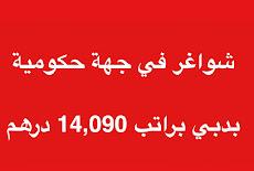 شواغر في جهة حكومية بدبي براتب 14,090 درهم