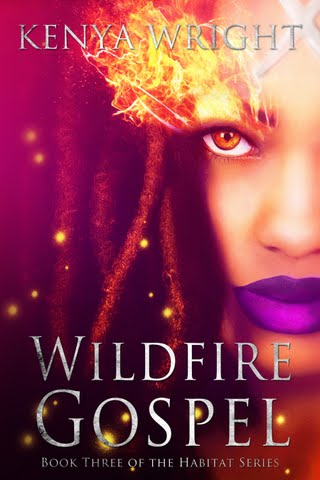 Cover Reveal: Wildfire Gospel and $30 Amazon Card Giveaway!