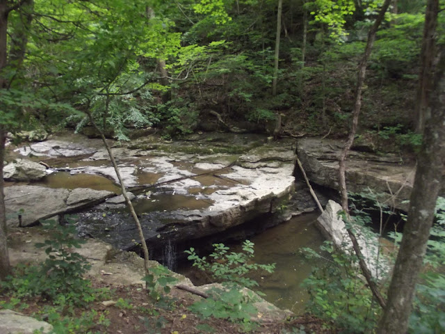 Nine Penny Run Waterfall