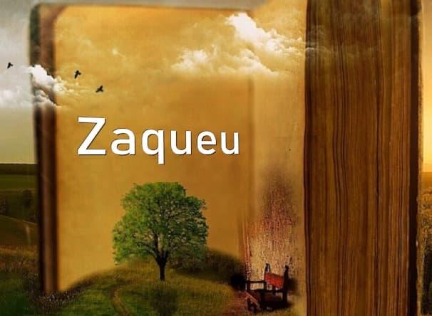 A imagem mostra um livro celestial aberto na página com o nome Zaqueu. Gaivotas e nuvens rodeiam esse grande livro.