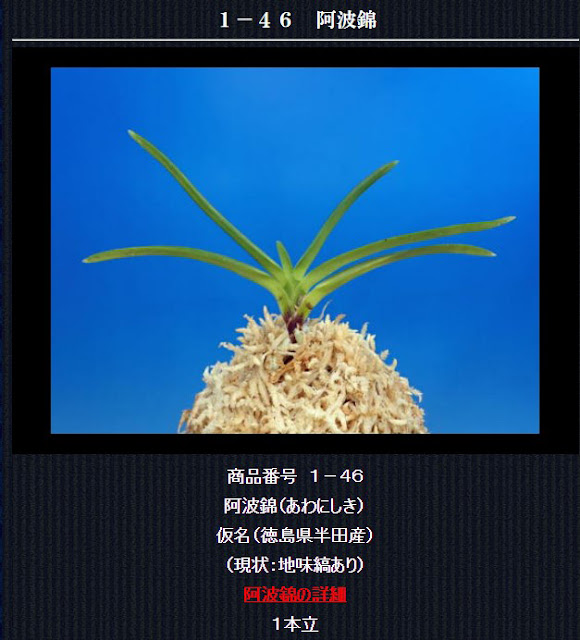 http://www.fuuran.jp/1-46.html
