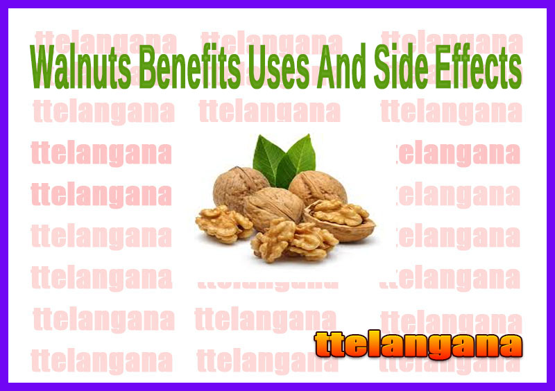 Walnuts Benefits Uses And Side Effects