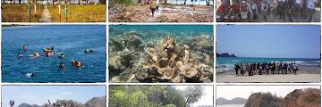 Kenang-Kenangan dari Pulau Sangiang - Banten, (Pantai, Bawah Laut, Gua, Tebing, hingga Panorama nan Eksotis)