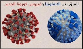 الفرق بين فيروس الأنفلونزا والكورونا