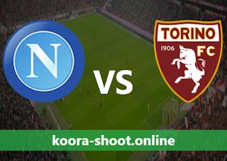 بث مباشر مباراة تورينو ونابولي اليوم بتاريخ 26/04/2021 الدوري الايطالي