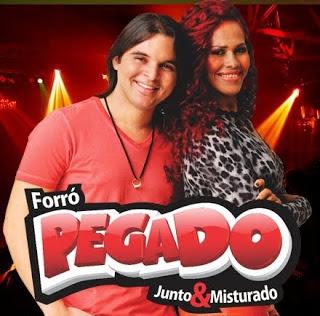 FORRO+PEGADO+2013 - Forró Pegado - Cole do Meu Lado e Solteiro na Sexta-Feira 2013