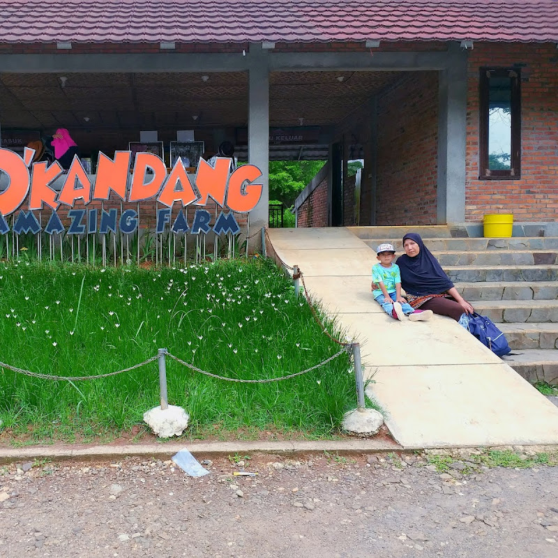 D'Kandang Amazing Farm Depok Wisata Edukasi Terjangkau Pilihan Nyonya Pelaut