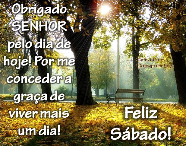 Bom Dia Maranhão Um Sábado Abençoado A Todos