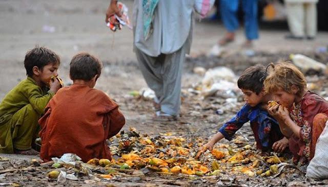 پاکستان نے غربت کی ترقی کے منصوبوں کو اقوام متحدہ میں پیش رفت کی پیشکش کی ہے