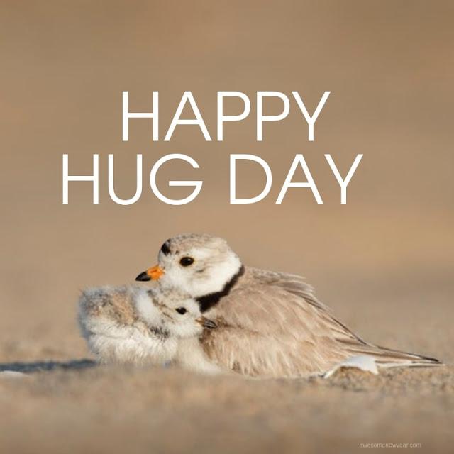 Happy Hug Day 2019 Pics