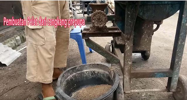 Pembuatan Pelet dari cangkang prepupa