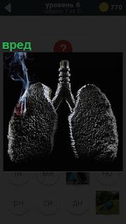 Изображение легких человека, говорящие о вреде курения и последствиях