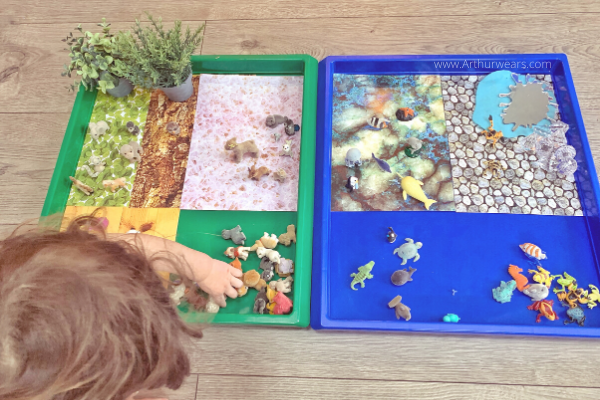 land and sea animals sorting Gratnells tuff tray  activity idea