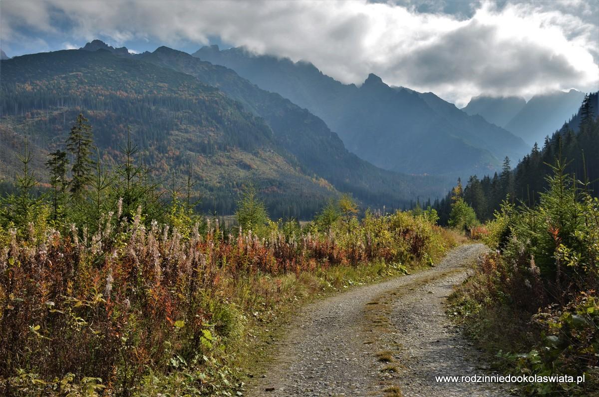Dolina Jaworowa z Jaworzyny Tatrzańskiej (Tatranská Javorina)