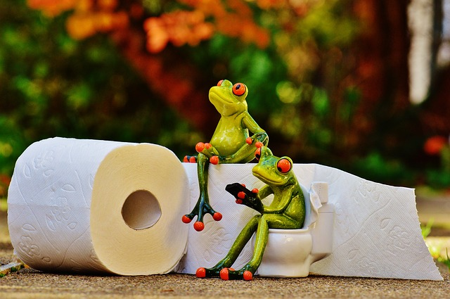 4 Animals That Might Easily Show Up In Your Toilet