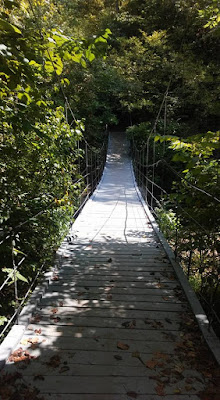 swinging bridge tanyard creek trail
