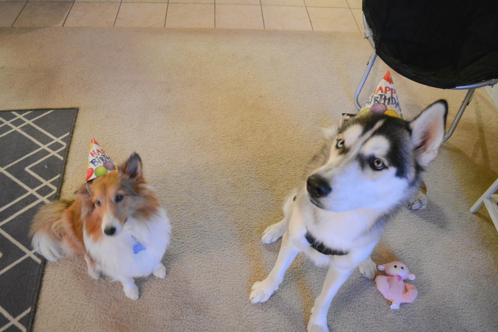 Oliver's 1st Birthday