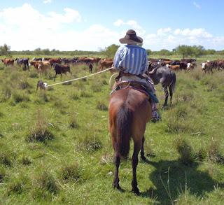 argentiina, horsexplore, ritta reissaa