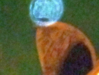 orb with letter