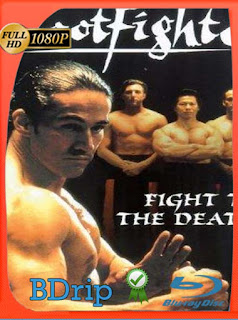 Shootfighter Fight to the Death (1993) Uncut BDRIP1080pLatino [GoogleDrive] SilvestreHD