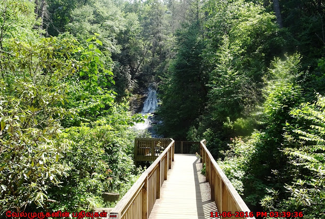 Helton Creek Falls observation deck