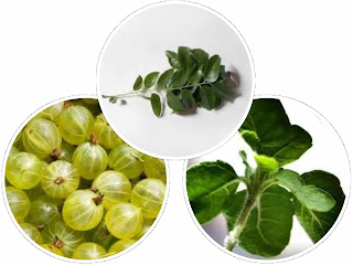 Tulsi/curry leaves/gooseberry
