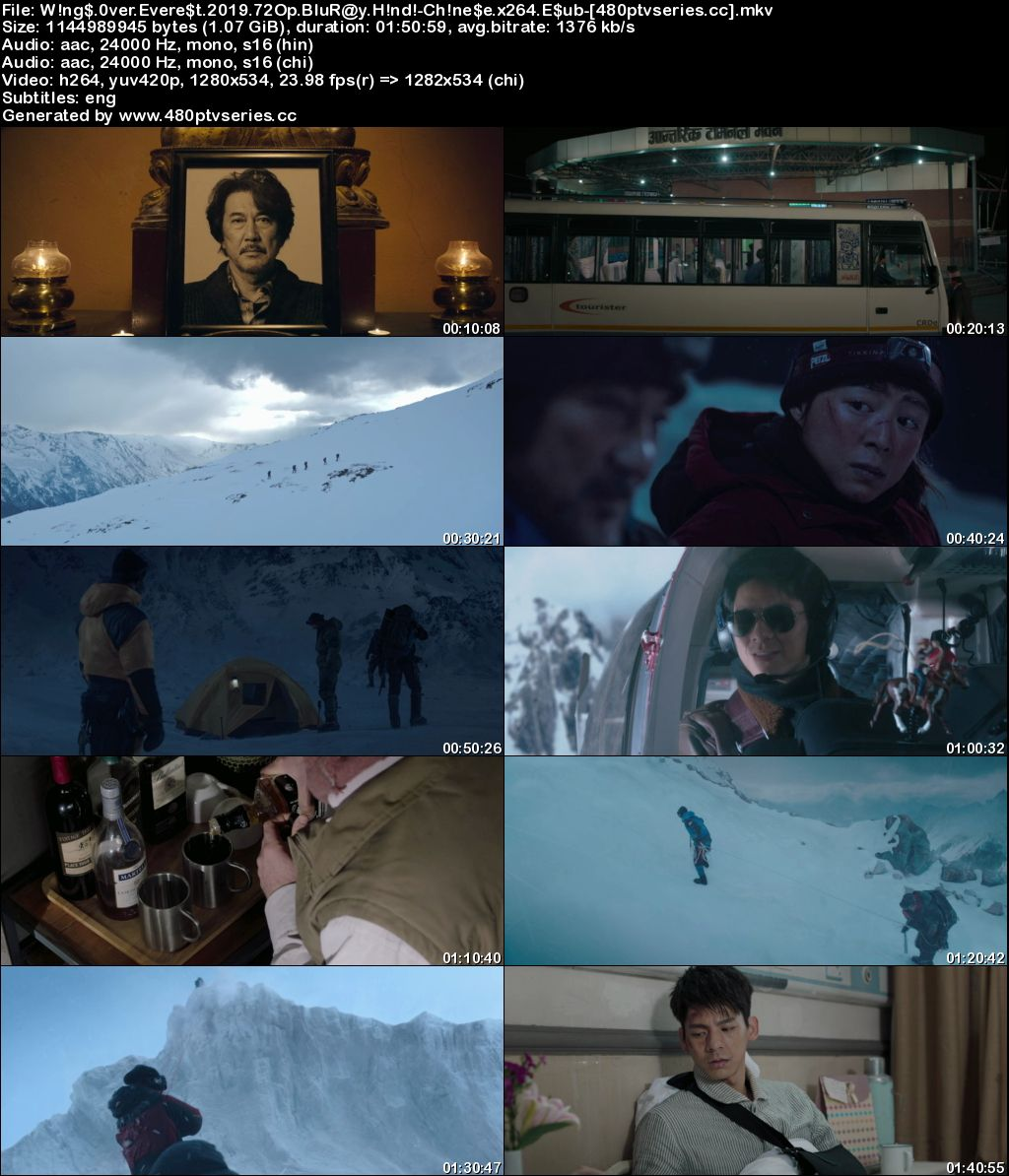 Wings Over Everest (2019) Full Hindi Dual Audio Movie Download 720p 480p Bluray Free Watch Online Full Movie Download Worldfree4u 9xmovies