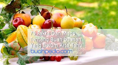 Fakta Dan Mitos Tentang Buah-buahan