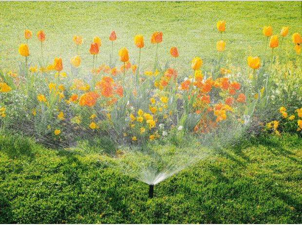 5 Benefits of Drip Irrigation Systems