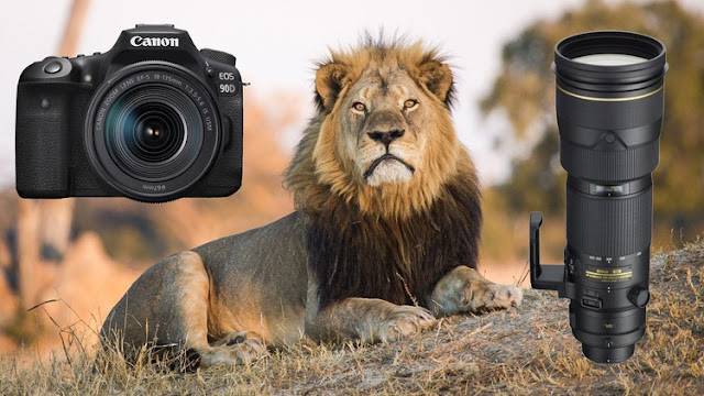 Photography & Video Photography