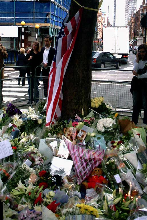 Tree, US Embassy, September 12, 2001, London