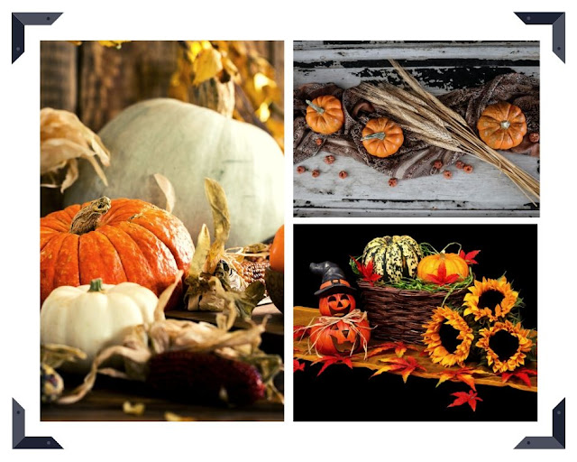 collage of harvest festival images