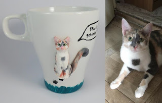 cani cu pisici