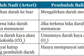Kunci Jawaban IPA Kelas 8 Halaman 283 - 286 Uji Kompetensi 6