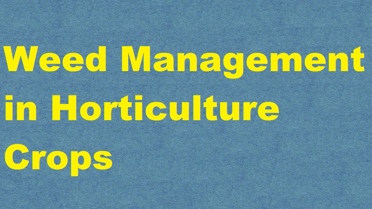 Weed Management in Horticulture Crops ICAR E course Free PDF Book Download e krishi shiksha