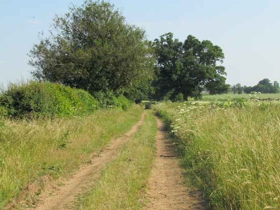 Image from Walk 19: Brookmans Park NE Loop by Hertfordshire Walker released under Creative Commons