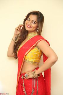 Actress Ashwini in Golden choli Red saree Spicy Pics ~  071.JPG