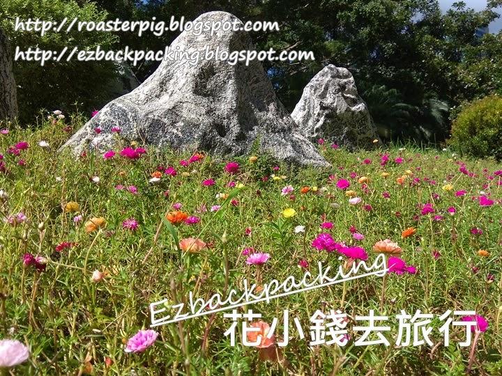 九龍公園花海