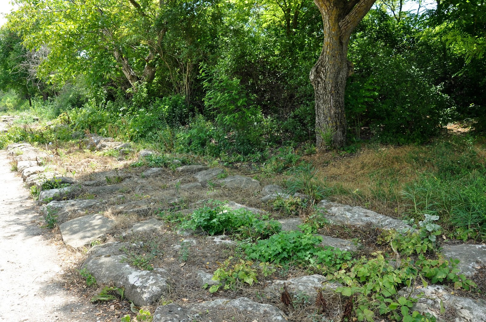 The remains of the wall leading up to the Basilica, Pliska, Bulgaria