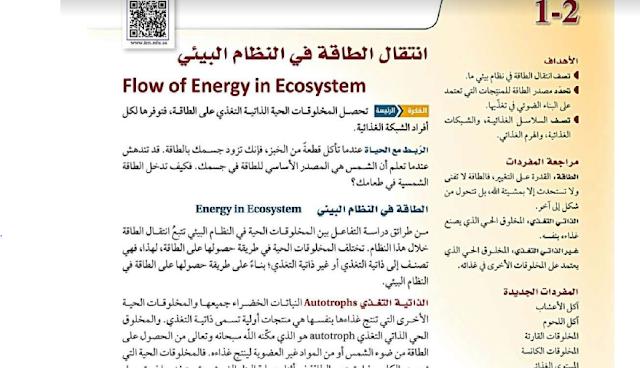 درس انتقال الطاقة في النظام البيئي علم البيئة