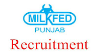 Milkfed Punjab 2021 Jobs Recruitment Notification of Assistant Manager Posts