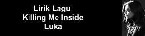 Lirik Lagu Killing Me Inside - Luka
