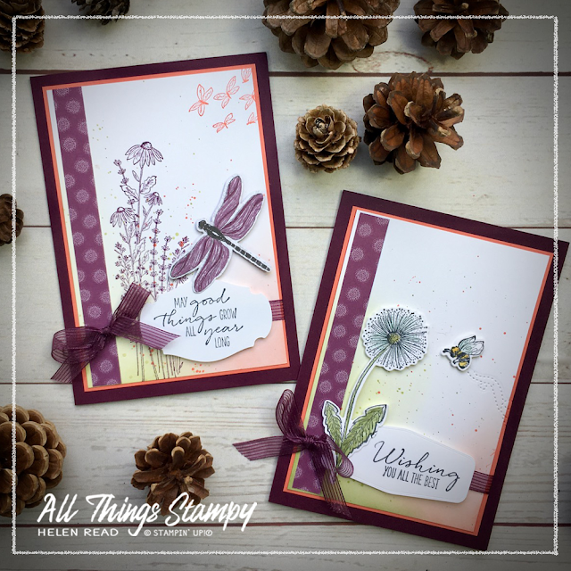 Dandy Garden Wishes Dragonfly Stampin Up