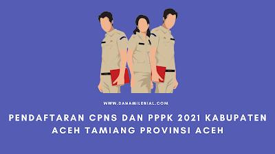 Pendaftaran CPNS Dan PPPK 2021 Aceh Tamiang Lulusan SMA D3 S1