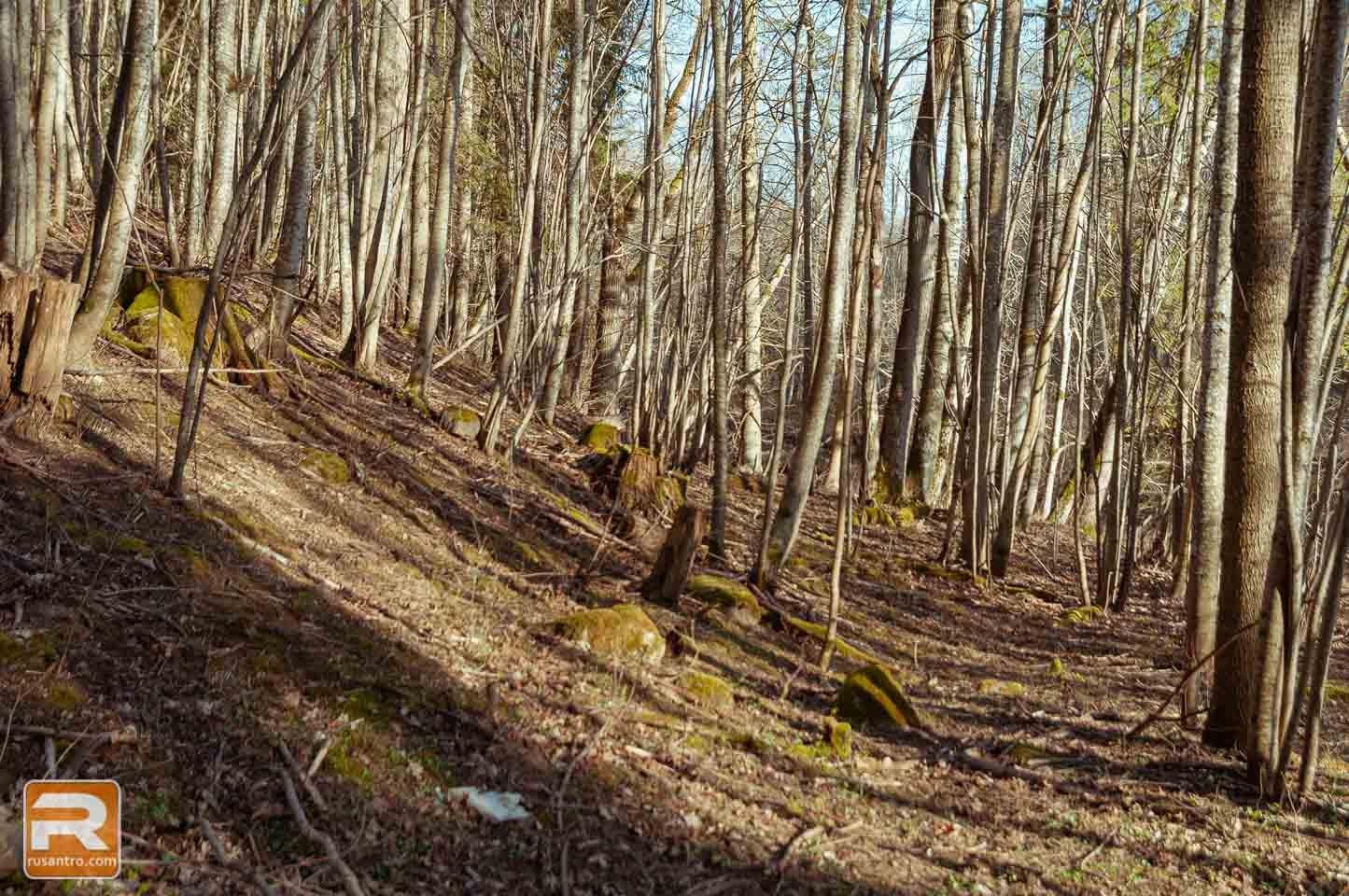 Vilces dabas parks 6