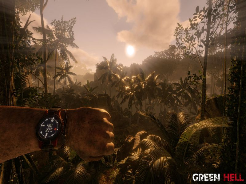 Download Green Hell Free Full Game For PC