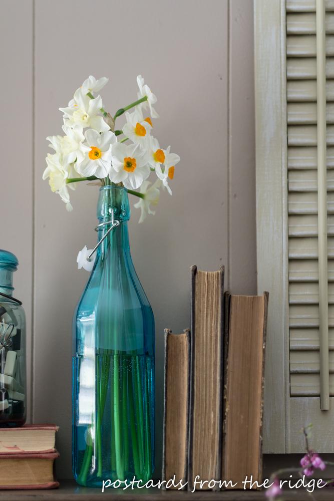daffodils in a blue bottle