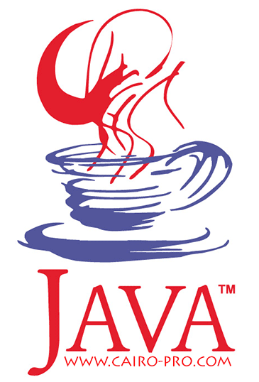 Java Runtime Environment 1.7.0.15
